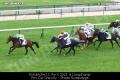 Dimanche 11 Avril - Arrivée du Quinté+ PMU à Longchamp : 4 - 12 - 1 - 15 - 2.