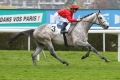Pedigree : Grey Lion, Karaktar