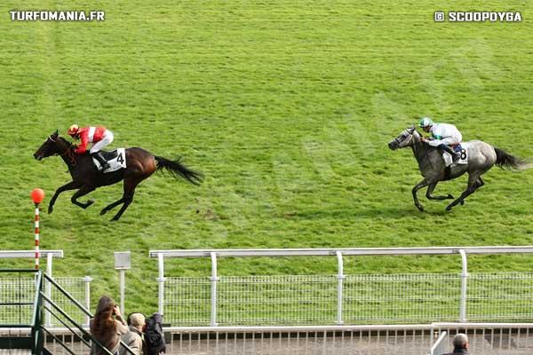 Raiponce cheval retrouvez toutes les performances de raiponce - Cheval raiponse ...