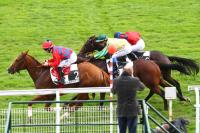 photo de ELLIOT CARVER