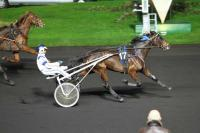 photo de ASCOT BARBES