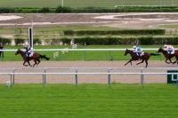 photo de HORSE SALOON