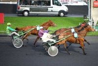 photo de DUDU DU NOYER