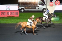 photo de FLYING HORSE