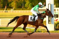 photo de FOREVER VICTORY