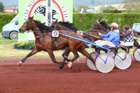photo de BOLIDE HIGHLAND