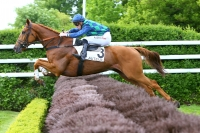 photo de GALOP MARIN