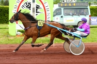 photo de DESTRIER JIEL